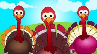 Cinco pavos pequeños   Rima para bebés   Canciones preescolares   Kids Rhymes   Five Little Turkeys