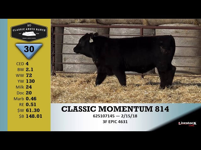 Classic Angus Ranch Lot 30