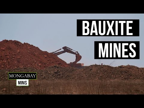 Bauxite Mining Destroys Ancient Forests In Guinea