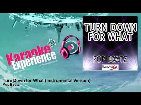 Pop Beatz - Turn Down for What (Instrumental Version)
