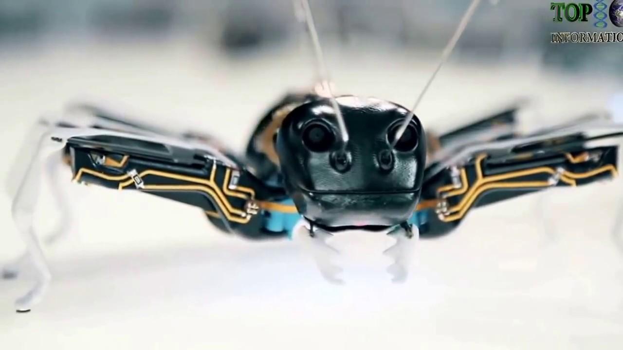 77 Gambar Robot Hewan Keren Gratis Terbaru