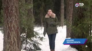 Малые города России: Конаково - здесь выпускали знаменитый на всю страну фаянс