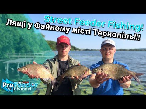 Рибалка на Тернопільському озері