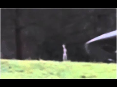 UFO Sightings Real Alien Caught On Tape 2014 - YouTube