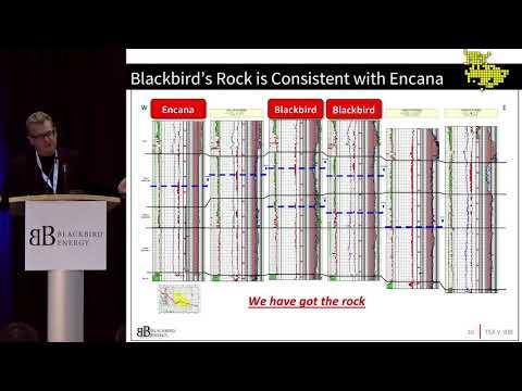 Blackbird Energy: Pure Play Condensate