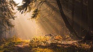 Lightroom 5 - Sun rays editing
