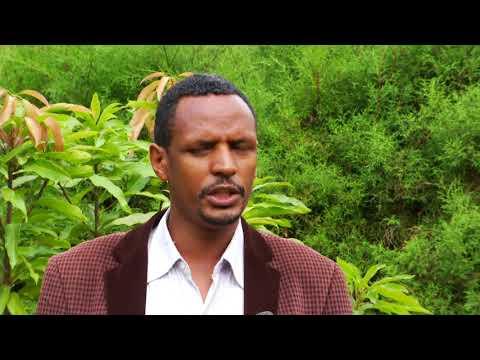 Ethiopian SNNPRS bulg 2010 e.c - በደቡብ ክልል የ2010 ዓ.ም የበልግ ዝናብ የዘገየ ቢሆንም በተለያዩ አማራጮች