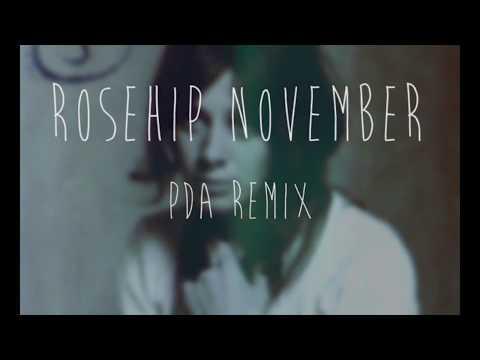 Rosehip November - Vashti Bunyan (PDA Remix)