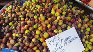Üvez meyvesi nedir?faydaları neler