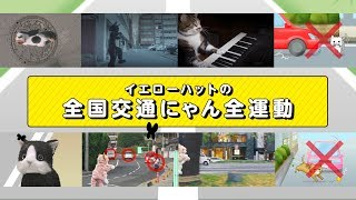 【猫専用動画】 #全国交通にゃん全運動 by イエローハット