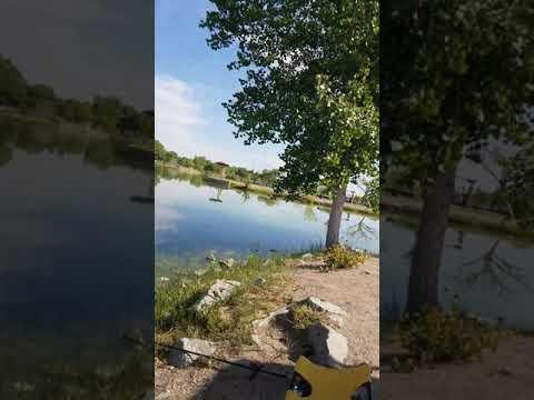 Isleta Lakes 2019 Fishing Durby