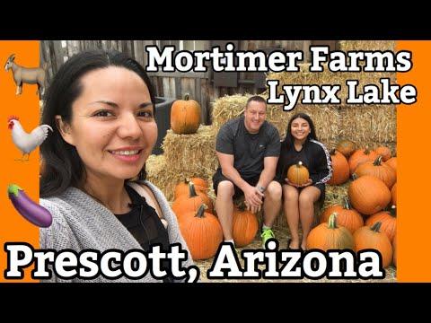 Visitando Prescott, Arizona 🤗 | Granja Mortimer | Mortimer Farm | Lynx Lake