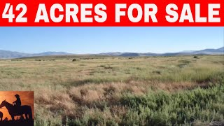 Nevada Owner Financing 42 Acres For Sale