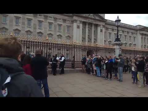 A woman tries to scale the gates of Buckingham palace as a crowd applauds.