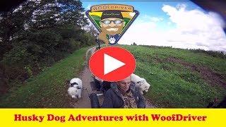Dog Videos | FurWheeling Union Canal Trail, PA  | Husky Dog Adventure