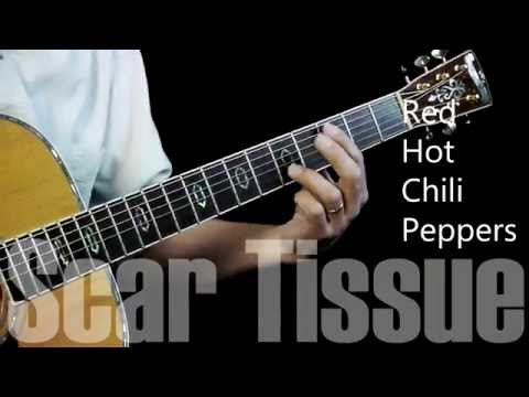 Scar Tissue - Guitar Lesson