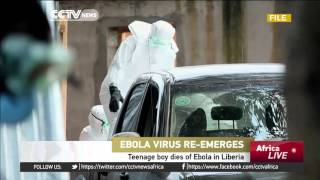 Teenage boy dies of Ebola in Liberia