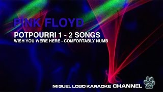 Baixar PINK FLOYD - POTPOURRI 1 - 2 SONGS - WISH YOU WERE HERE - COMFORTABLY NUMB - Karaoke