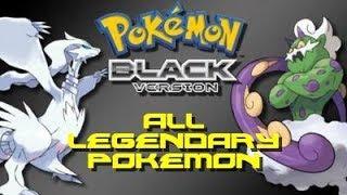 Pokemon Pokemon white black and
