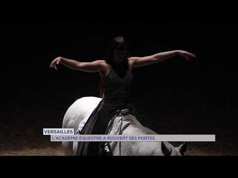 Versailles : l'Académie équestre repart