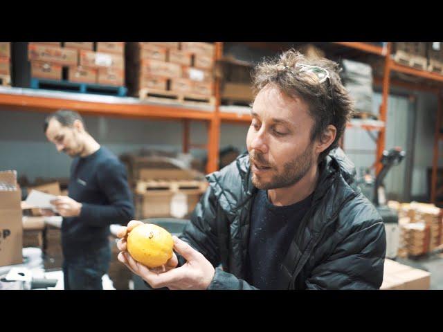 When life gives you lemons | BTL 33