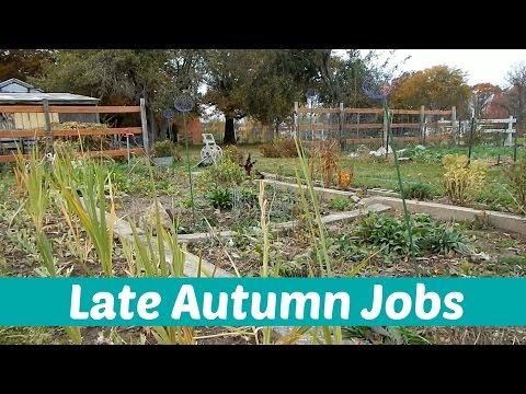 S1/Ep38 - Late Autumn Jobs | Garden Vlog
