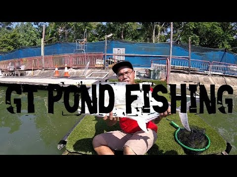 How We Fish At Angler's Playground GT Fishing Pond