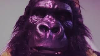 Halloween Candy PSA! #tape 🐵 #gorillamask #Apemask #Halloween candy #PSA
