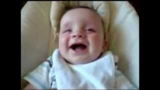 Funny Babies Laughing funny videos Download