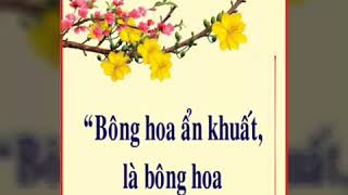 Vươn cao linh hồn - Lm Nguyễn Sang