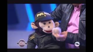 TATO POLICIA