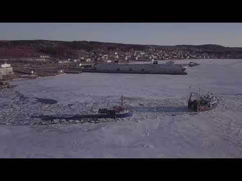 Lewisporte Fishing fleet breaking up the sea ice in the harbour...