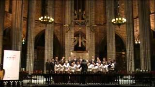 T. Sarsany - Salve Mater Misericordiae