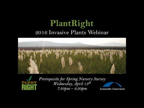2016 Invasive Plants Webinar - Northern California