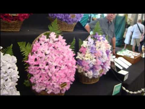 Eye-Catching Flowers and Plants at Hampton Court Palace Flower Show 2015 Part 3