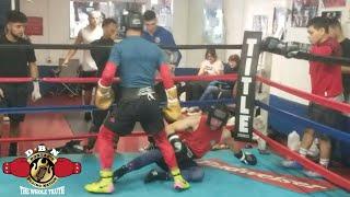 (SPAR WARS) Vicious Knockdown!! Murodjon Akhmadaliev spars Macedo