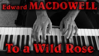 Edward MACDOWELL: Op. 51, No. 1 (To a Wild Rose)