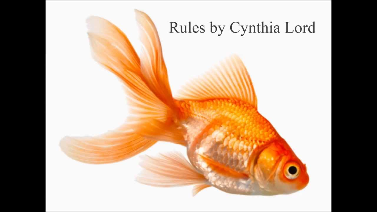 rules by cynthia lord a book Rules by cynthia lord is a newbery award winning children's book that kids will learn from and relate to click here for details.