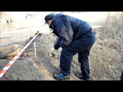На стройке в Брестской крепости найдены человеческие останки