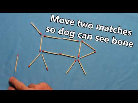 Best Match Puzzle