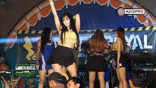 DJ CACA FEAT ALL ARTIS LADIES ROYAL
