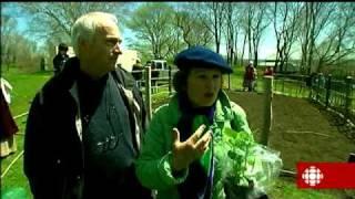 La semaine verte - Le potager de la Nouvelle France