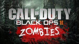 BLACK OPS 2 TRANZIT IN 4K ULTRA GRAPHIC 60 FPS GAMEPLAY