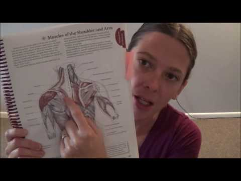 Tennis ball therapy for posterior neck,shoulders and back