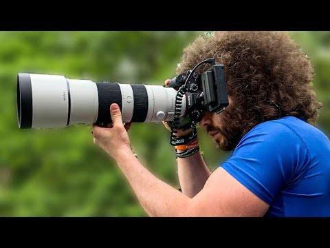 The MUST HAVE Sony LENS for Wildlife & Sports Photography   Sony 200-600mm f5.6-6.3 Review