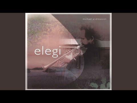 Ellens Gesang III Ave Maria! , Op 52, No 6, D 839, Hymne an die Jungfrau arr for
