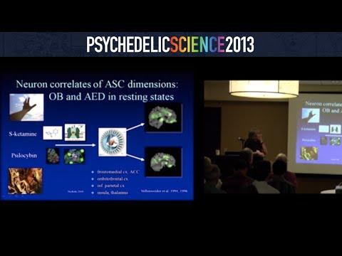 Neuroscience of Psychedelics Workshop - Part 3/4