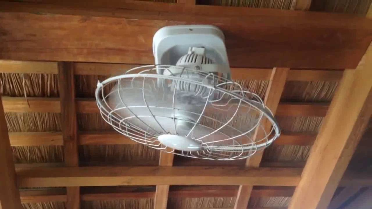 3d Brand Orbit Ceiling Fan In A Massage Area Install Celing Wiring
