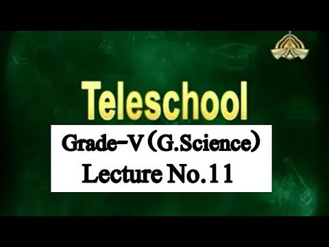 Teleschool PTV Grade-V G.Science (Lecture No.11)