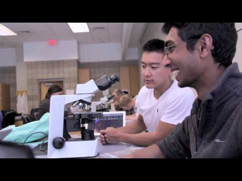Discover Your Place at the University of Minnesota Medical School - Medical Students